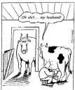 vaca_infiel.jpg